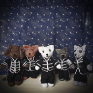 thumbnail of all five kitties