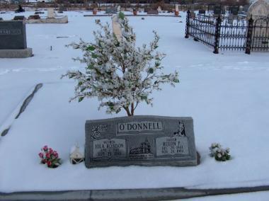 Grave Iola & Rulon O'Donnell
